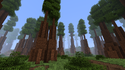 Redwood Forestbiome.png